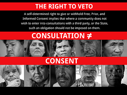 the-right-to-veto